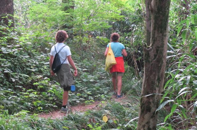 apa '15_Footnotes on... / Botanical Garden Batumi sep 2015